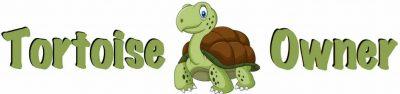 Tortoise Owner Logo